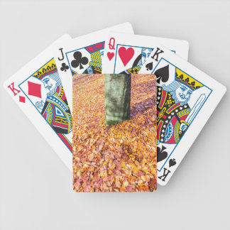 Ground around tree trunk covered with autumn leave bicycle playing cards