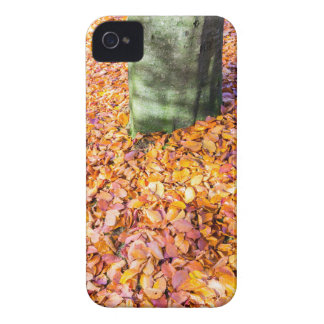 Ground around tree trunk covered with autumn leave Case-Mate iPhone 4 case