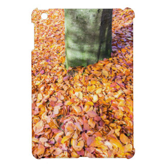 Ground around tree trunk covered with autumn leave cover for the iPad mini