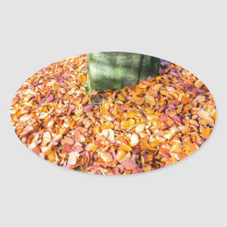 Ground around tree trunk covered with autumn leave oval sticker
