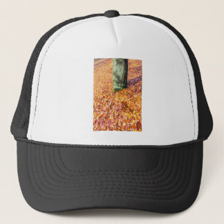 Ground around tree trunk covered with autumn leave trucker hat
