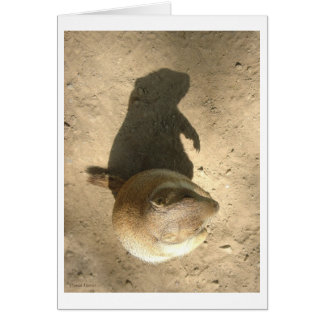 Ground Hog Day Card