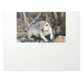 Ground Squirrel Note Pads