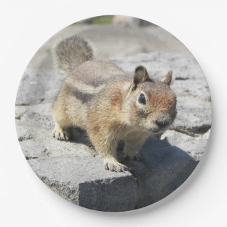 Ground Squirrel Photo Paper Plate