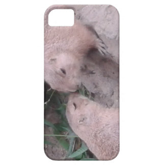 Ground squirrels iPhone 5 case