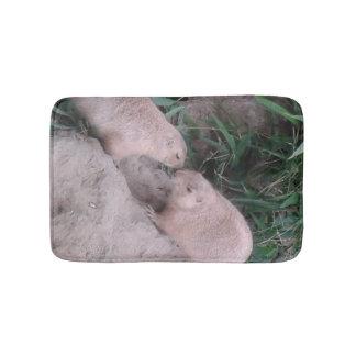 Ground squirrels on a bathmat
