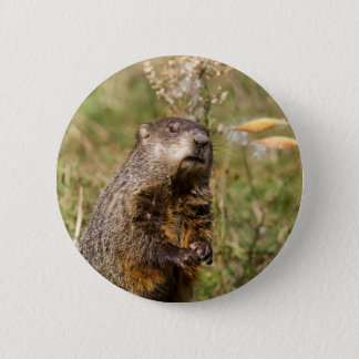 Groundhog 2 Inch Round Button
