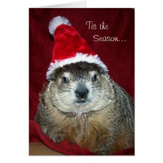 Groundhog Clara Holiday Greeting Card