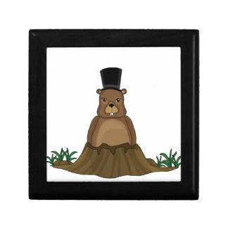 Groundhog day - cartoon style gift box