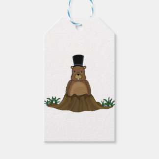 Groundhog day - cartoon style pack of gift tags