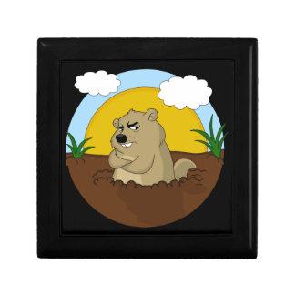 Groundhog day gift box