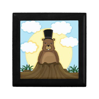 Groundhog day gift boxes
