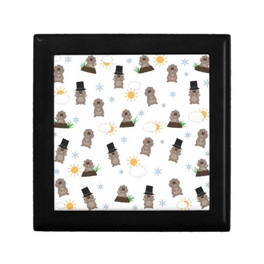 Groundhog Day Pattern Gift Box