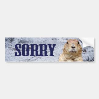 Groundhog Day Sorry Bumper Sticker