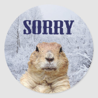 Groundhog Day Sorry Classic Round Sticker