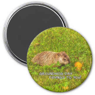 Groundhog Day tidings to you! magnet