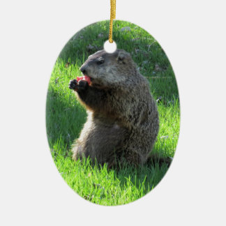 Groundhog eating ceramic ornament