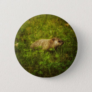 Groundhog in a field button