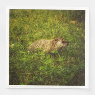 Groundhog in a field napkins