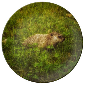 Groundhog in a field Porcelain plate