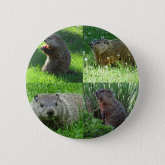 Groundhog Medley 2 Inch Round Button