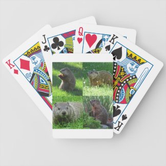 Groundhog Medley Bicycle Playing Cards