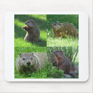 Groundhog Medley Mouse Pad