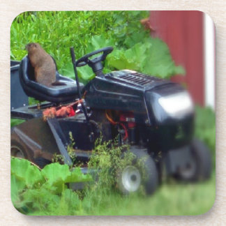 Groundhog on a  Lawn Mower Drink Coasters