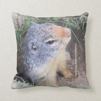 Groundhog Pillow