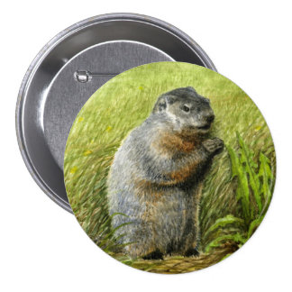 Groundhog pin / button