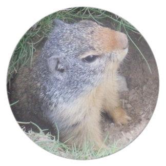 Groundhog Plate