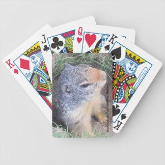 Groundhog Playing Cards