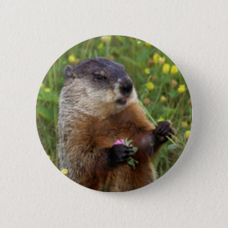 Groundhog Pose Button - Closer