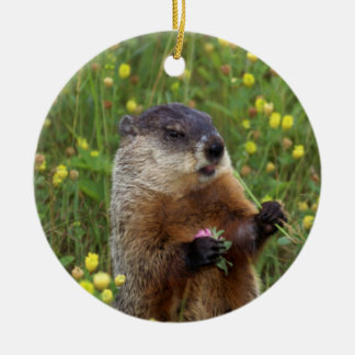 Groundhog Pose Round Ceramic Ornament