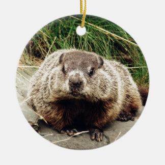 Groundhog Round Ceramic Ornament