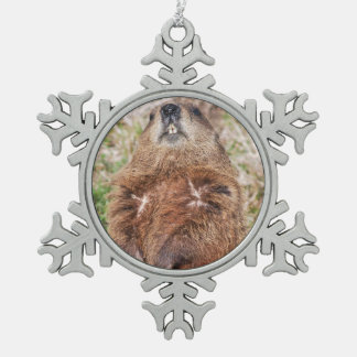 Groundhog Snowflake Pewter Christmas Ornament
