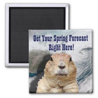 Groundhog Spring Forecast Magnet