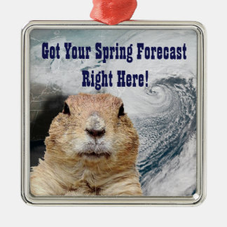 Groundhog Spring Forecast Metal Ornament