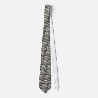 Groundhog tie