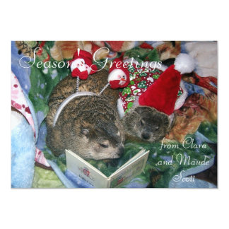 Groundhogs Clara and Maude's Holiday Greeting Card