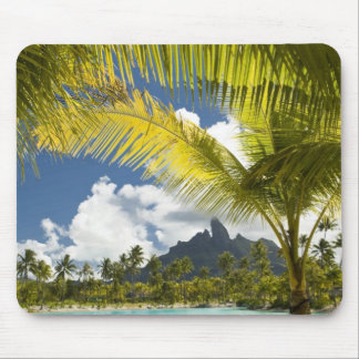 Grounds and scenics of the new luxury St. Regis Mouse Pad