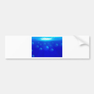 Group blue jellyfish in the Atlantic ocean swiming Bumper Sticker