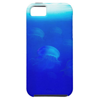 Group blue jellyfish in the Atlantic ocean swiming Case For The iPhone 5