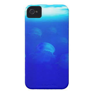 Group blue jellyfish in the Atlantic ocean swiming Case-Mate iPhone 4 Cases