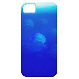 Group blue jellyfish in the Atlantic ocean swiming iPhone 5 Case
