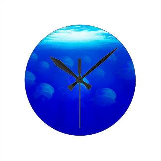 Group blue jellyfish in the Atlantic ocean swiming Round Clock