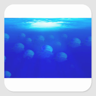 Group blue jellyfish in the Atlantic ocean swiming Square Sticker