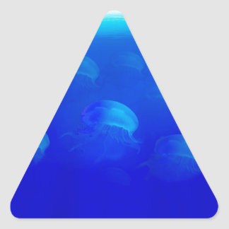 Group blue jellyfish in the Atlantic ocean swiming Triangle Sticker