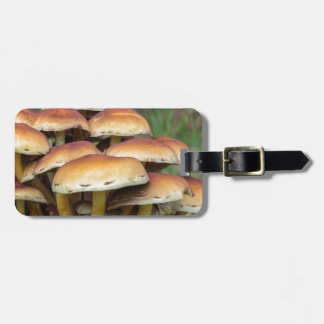 Group brown mushrooms in fall forest luggage tag