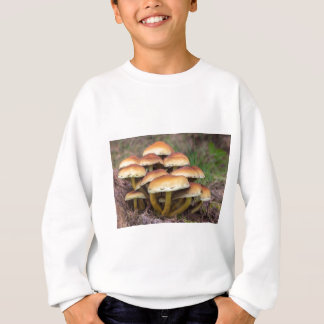 Group brown mushrooms in fall forest sweatshirt